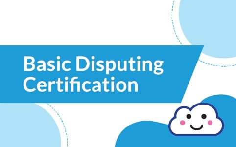 Basic Disputing Course